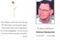 HelmutHentschelStebeblättchenJan2009